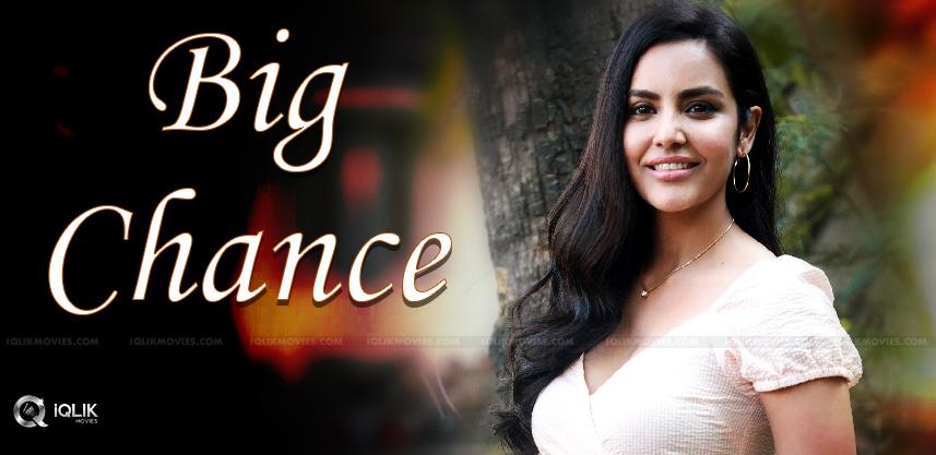 priya-anand-may-act-gang-leader-movie