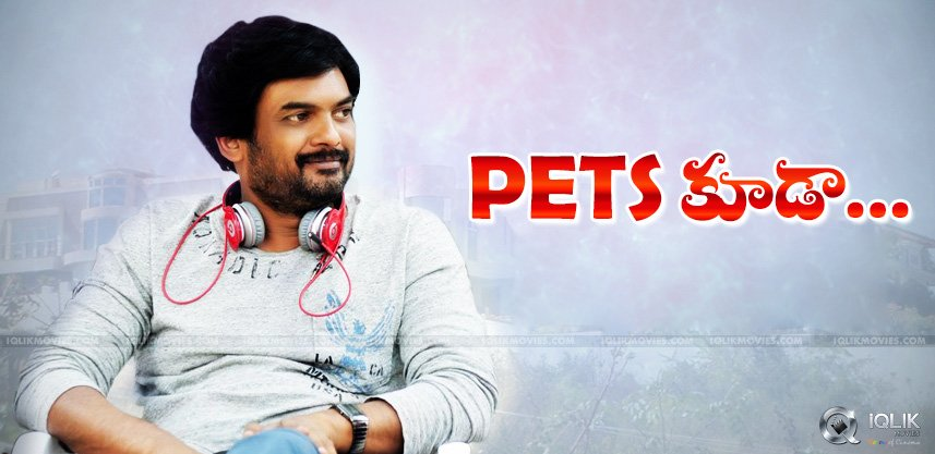 puri-jagannadh-pets-act-in-temper-movie
