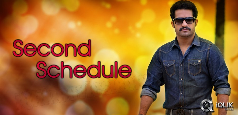 NTR-Srinivas-film-new-schedule-from-tomorrow
