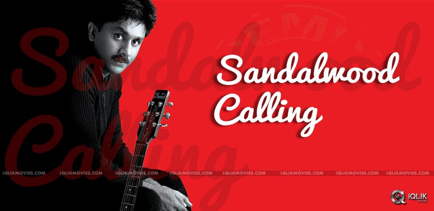 raghu-kunche-doing-music-fo-kannada-films