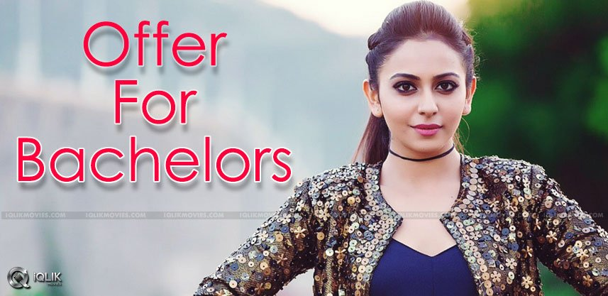 rakul-preet-offer-bachelors-details-