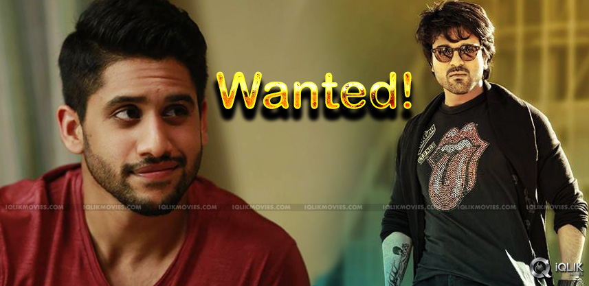 charan-chaitanya-wants-to-do-film-with-gandhi