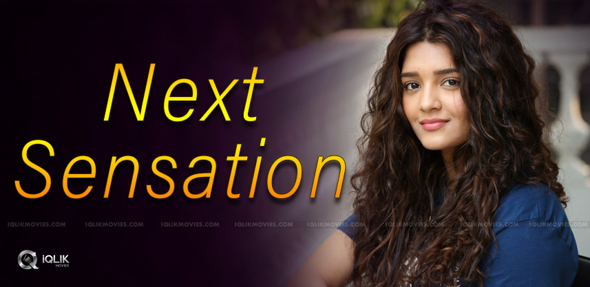 ritika-sigh-will-be-the-next-sensation-