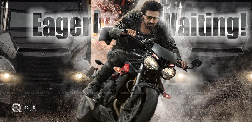saaho-movie-first-review-demanded