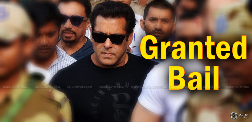 salman-khan-gets-bail-to-be-released-evening-