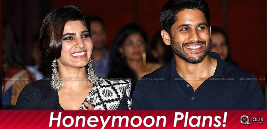 samantha-nagachaitanya-honeymoon-details