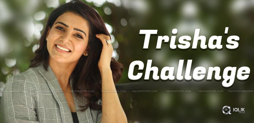 Trisha's Big Challenge To Samantha