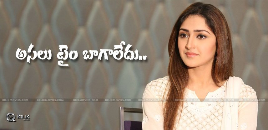discussion-on-sayeshasaigal-films-akhil-shivaay