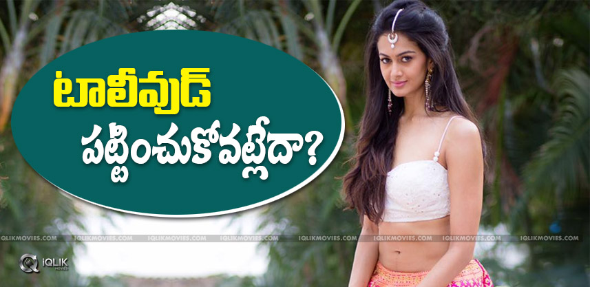 tollywood-offers-for-shubraaiyappa