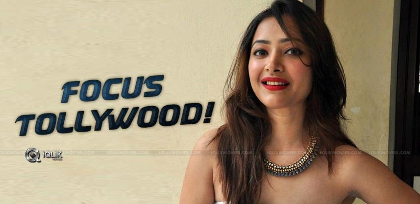 Swetha-Basu-To-Focus-On-Tollywood