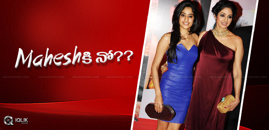 sridevi-daughter-jhanvi-rejects-mahesh-film