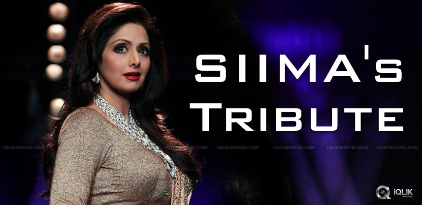 SIIMA's Grand Tribute To Sridevi