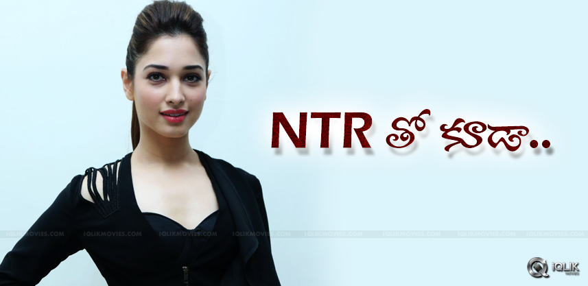 discussion-on-tamannaah-doing-special-songs