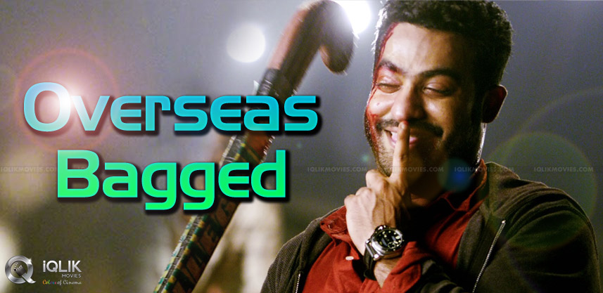 great-india-films-acquired-temper-overseas-rights