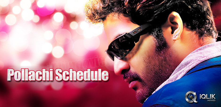 The-new-schedule-of-NTR-Srinivas039-s-film-from