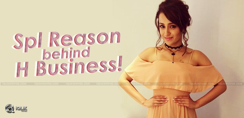 reason-behind-trisha-hotel-business-details