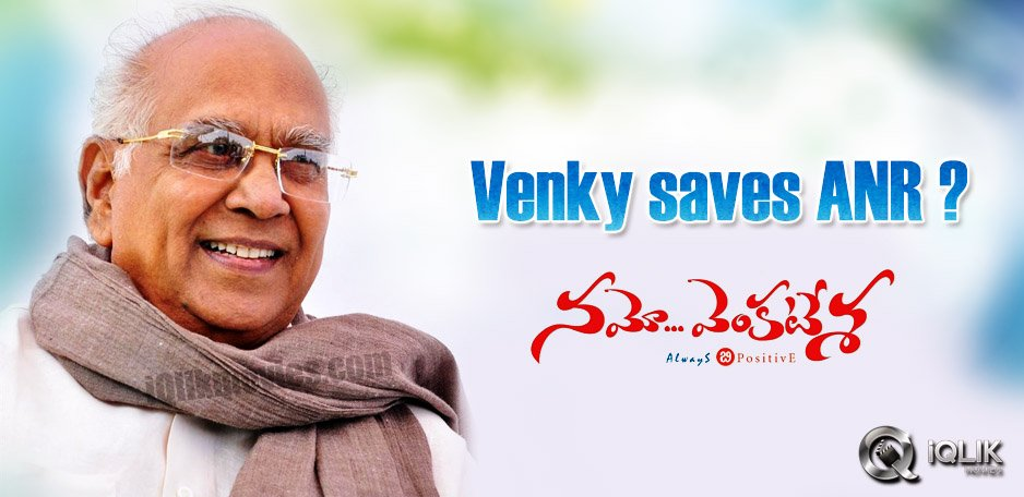 Venky-saves-ANR