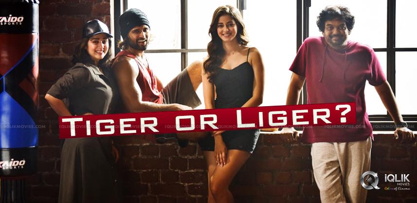 Vijay-Deverakonda-Next-Fighter-Or-Liger