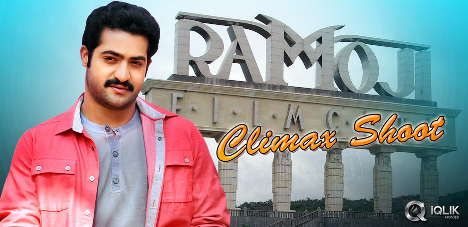 Young-Tiger-Shooting-for-RV-Climax
