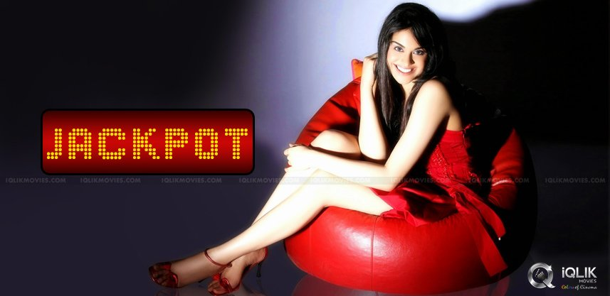adah-sharma-got-signed-by-pvp-banner