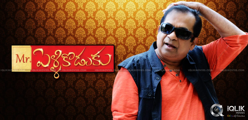 brahmanandam-as-pellikoduku-in-joru-movie