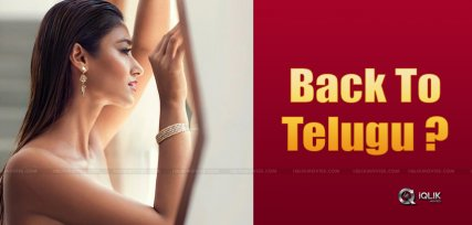 ileana-next-tollywood-movie-hero
