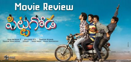 pittagoda-movie-review-ratings-vishwadev-punarnavi