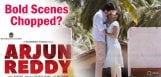 arjun-reddy-bold-scenes