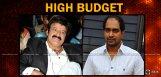 budget-estimate-of-balakrishna-krish-movie