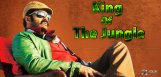 balayya-title-is-now-king-of-the-forest