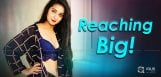 bhanu-bags-big-on-small-screen