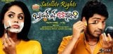 allari-naresh-brother-of-bommali-satellite-rights