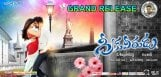 Greekuveerudu-Grand-release