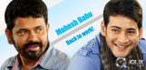 Mahesh-Babu-back-to-work