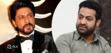 shah-rukh-disturbs-jr-ntr-plans