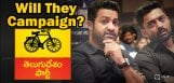 jr-ntr-kalyan-ram-may-campaign-for-tdp