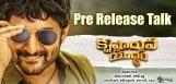 nani-krishnarjuna-yudhdham-pre-release-talk-