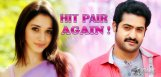 NTR-to-romance-Tamannah-again