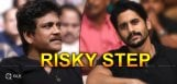 naga-chaitanya-in-cricket-based-film-details