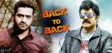 pataas-temper-and-lion-movies-release-dates