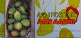 pawan-kalyan-sent-mangoes-to-director-bobby