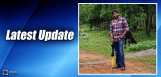 latest-updates-on-pawan-dolly-film