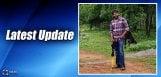 latest-updates-on-pawan-dolly-film