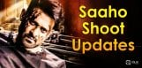 prabhas-saaho-shooting-updates