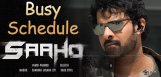 saaho-team-busy-schedule-in-mumbai
