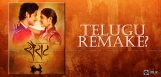 speculations-on-marathi-film-sairat-in-telugu-deta