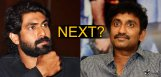 speculations-on-srinu-vaitla-next-movie-with-rana