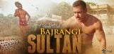 salman-khan-getup-in-sultan-movie