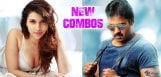 mannara-chopra-opposite-sunil-in-vamsi-akella-film