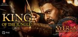 sye-raa-roaring-box-office